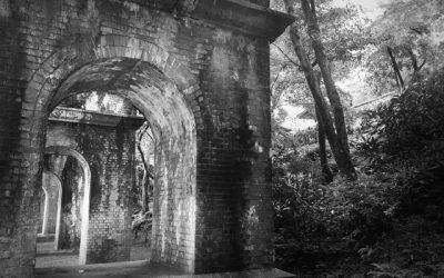 Streets of Miyako¹